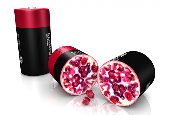 pomegranate_battery_v01